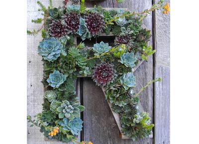 /static/images/articles/Flora Grubb Gardens letter
