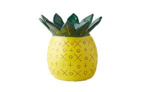 pineapple vase anthro