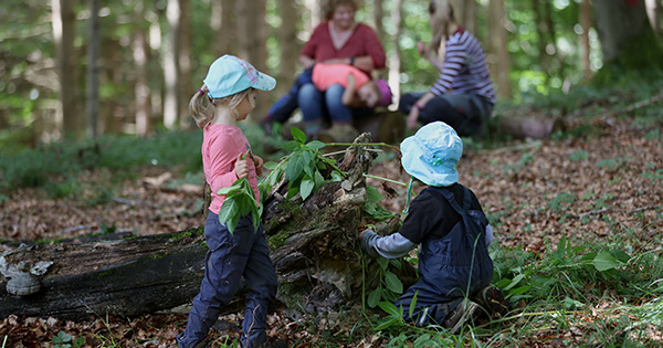 What's a Forest School (and When Can My Kid Start)?