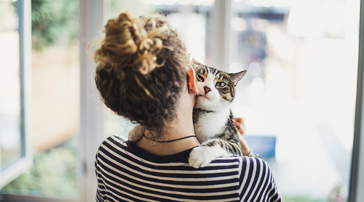 8 Signs Your Cat Loves You (According to Science)