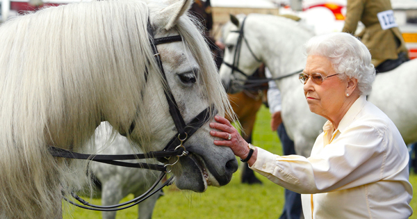 Queen Elizabeth Stills Rides Her Horse, and We Have Photo Evidence