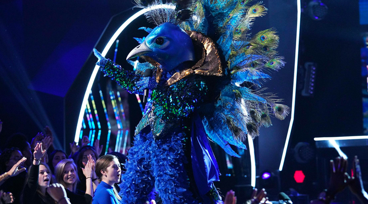 In These Uncertain Times, 'The Masked Singer' Is a World I Want to Live In
