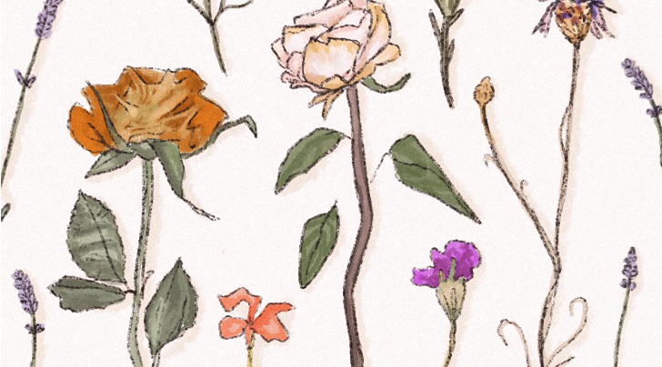 How to Preserve a Rose You'll Keep Forever