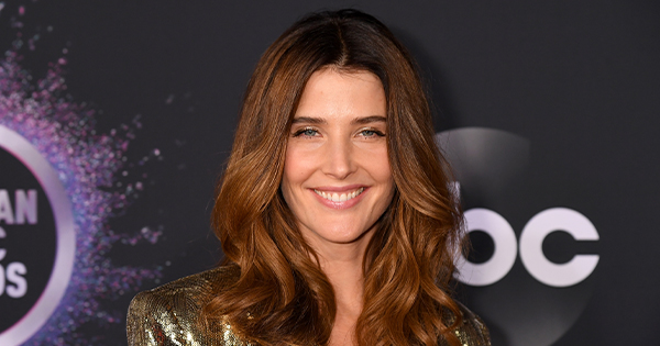 What's Cobie Smulders Doing After 'Avengers?'
