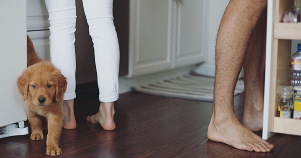 Here's What Happens If You Don't Wear Shoes At Home, According to a Podiatrist