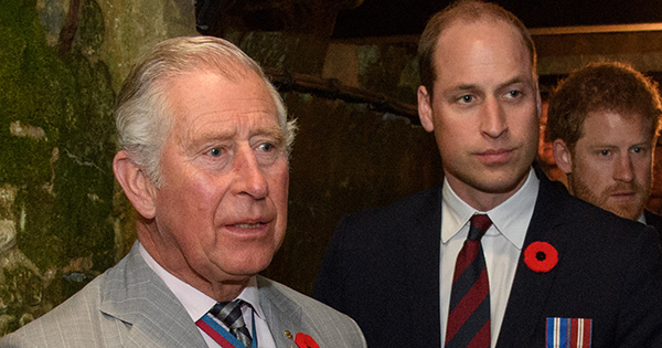 Is It Just Us or Is Prince William the Spitting Image of Prince Charles in Brand-New Royal Photo?